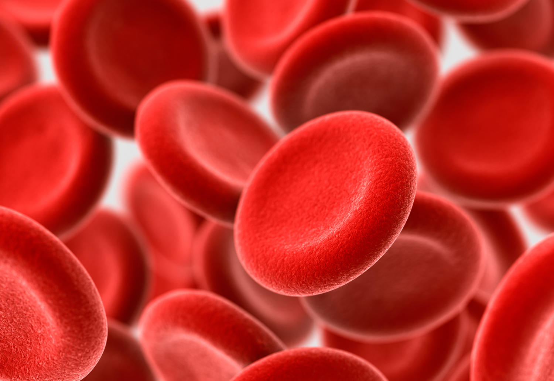 plasma rico en plaquetas CLÍNICA NÉLIDA GRANDE